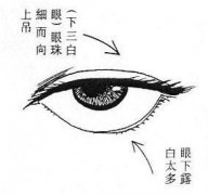 <a href='http://www.yidao5.com/article/201111/13/642.shtml'>女人下三白眼图解</a>